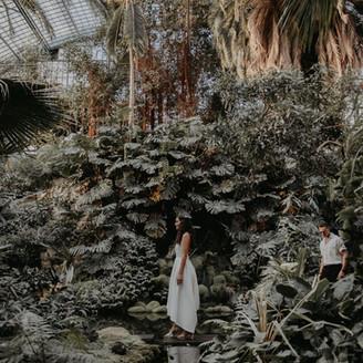 PALMENGARTEN. wedding story