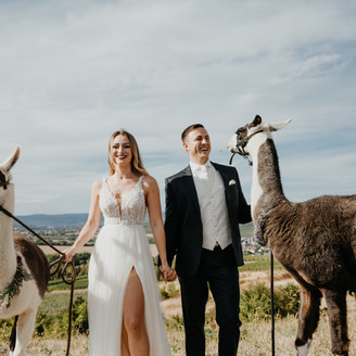ranch STYLED SHOOT // brautpaarshooting mit lamas