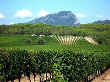 languedoc-roussillon-wine-region-1.jpg