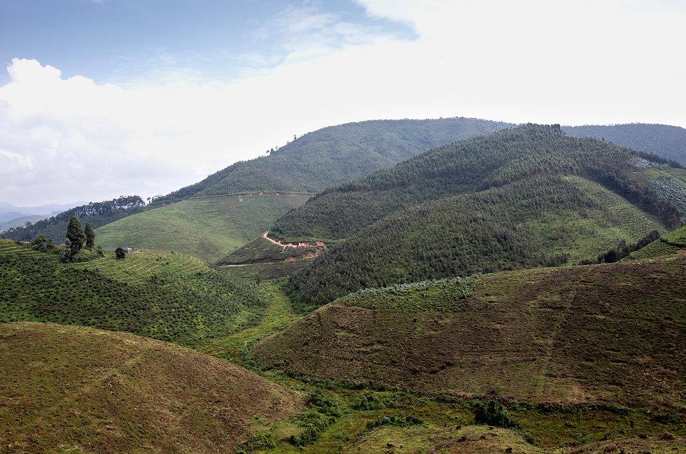 Rwanda 0598.jpg