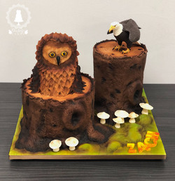 Birds of prey cake
