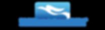 IBS18 EWS Logo.png