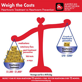 0010-weigh-the-costs (1).jpg