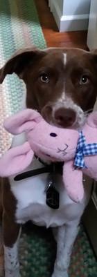 Sheena with Pinka Bunny