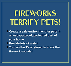 fireworks terrify pets.png