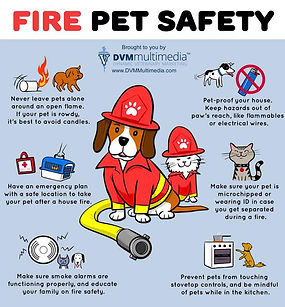 fire pet safety.jpg