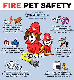 fire pet safety.jpg