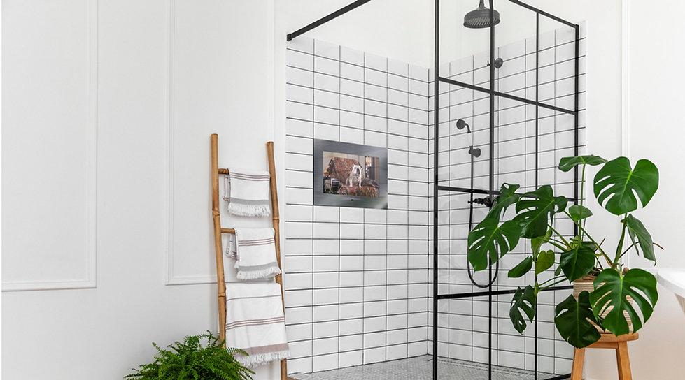 shower-aquatv-1440x800-1.jpg