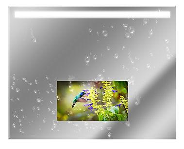 Mirrortv-waterproof.jpg