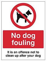 dog fouling pic.jpg