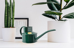 Pot Waterer - Green cropped x800.jpg