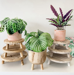 New Timber.jpg