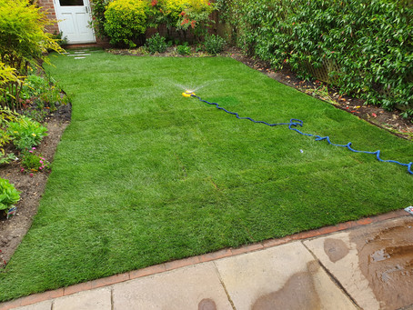 Why Lawn Edging Is Good For Your Lawn