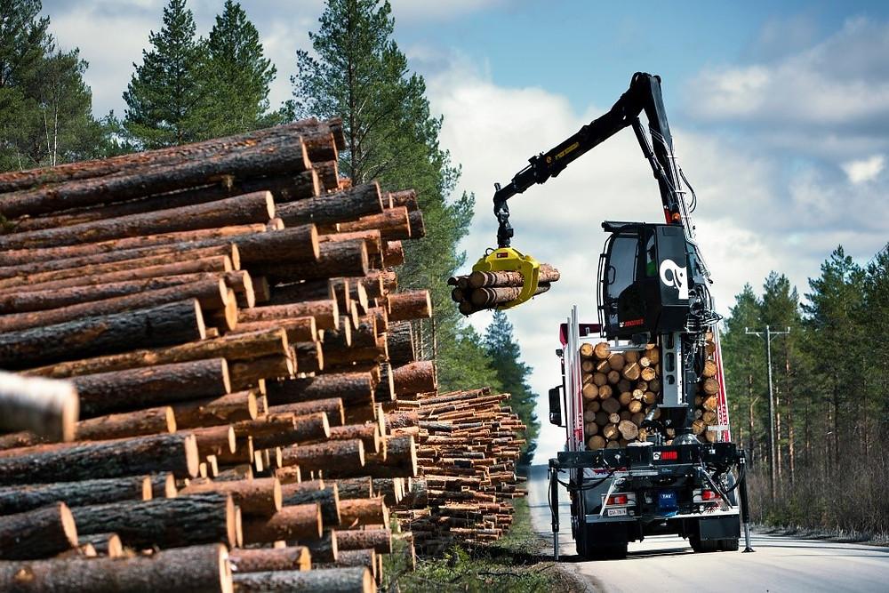 Что мешает развитию лесопромышленного комплекса Сахалина?