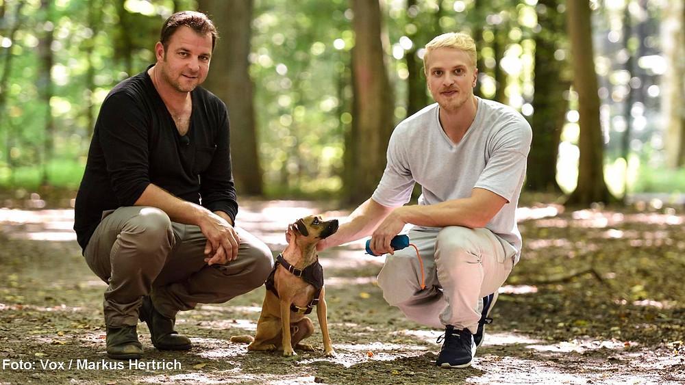 VIP Hundeprofi Martin Rütter Mario Galla