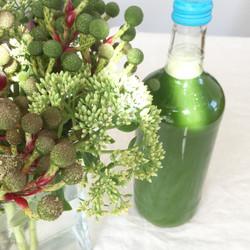coldpressd juice/サマーグリーンsummer green