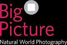 BigPic_edited_edited_edited.jpg