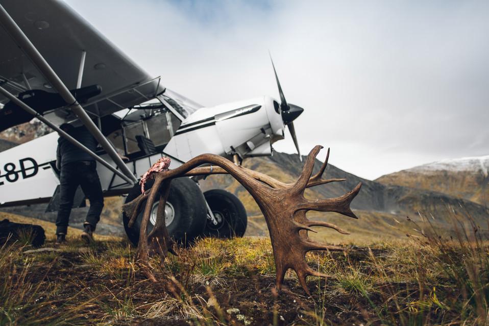 Caribou Hunt - Alaska