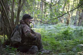 roe deer-2723.jpg