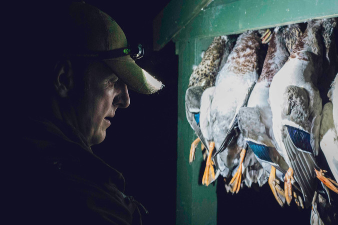 Duck Shooting - VIKING