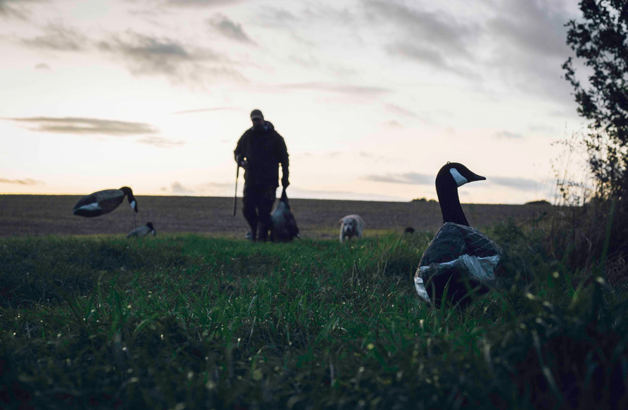 Inland Waterfowling