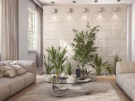 El espacio y las plantas