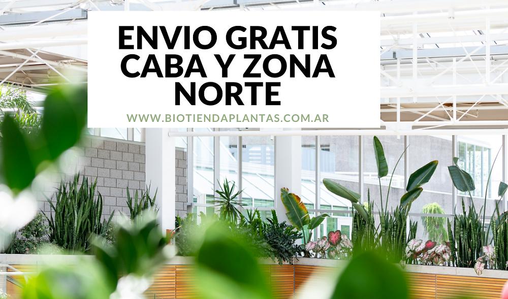 envio de plantas gratis
