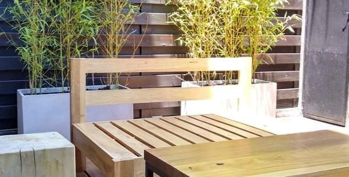 Plantas de bambu en maceta fibro 80cm