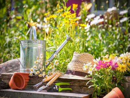 La jardinería aplicada como terapia sanadora