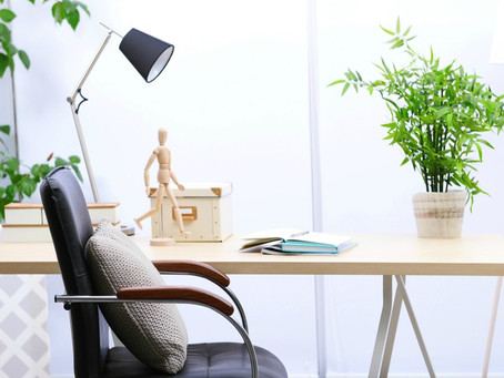 Las mejores plantas para la oficina