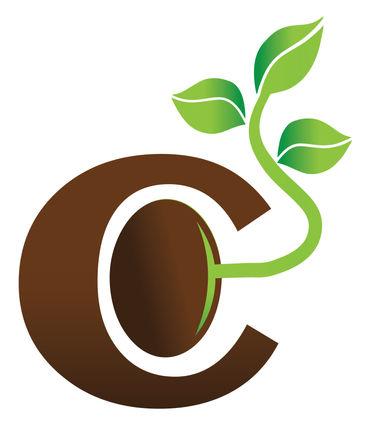 Core Advantage Advisors Logo