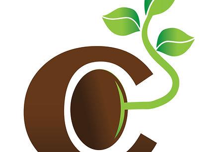 Core Advantage Adviors Logo