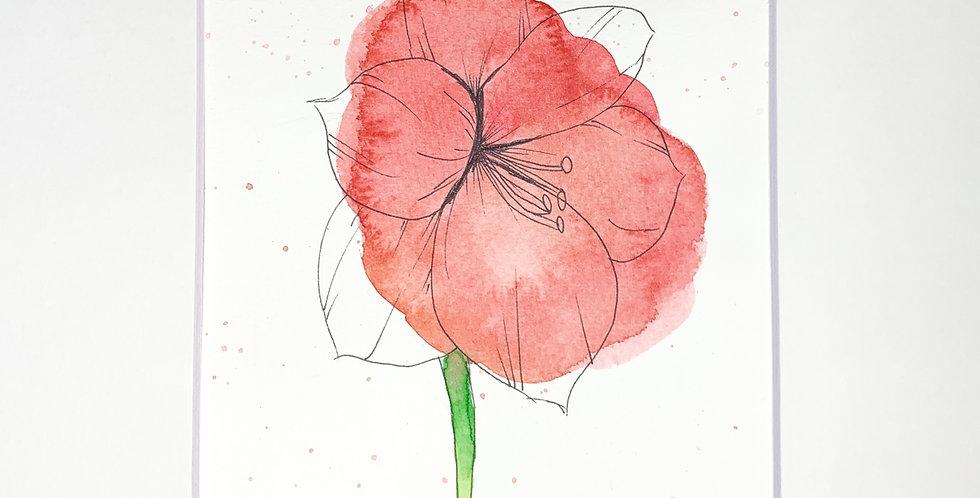 Vermillion  Floral