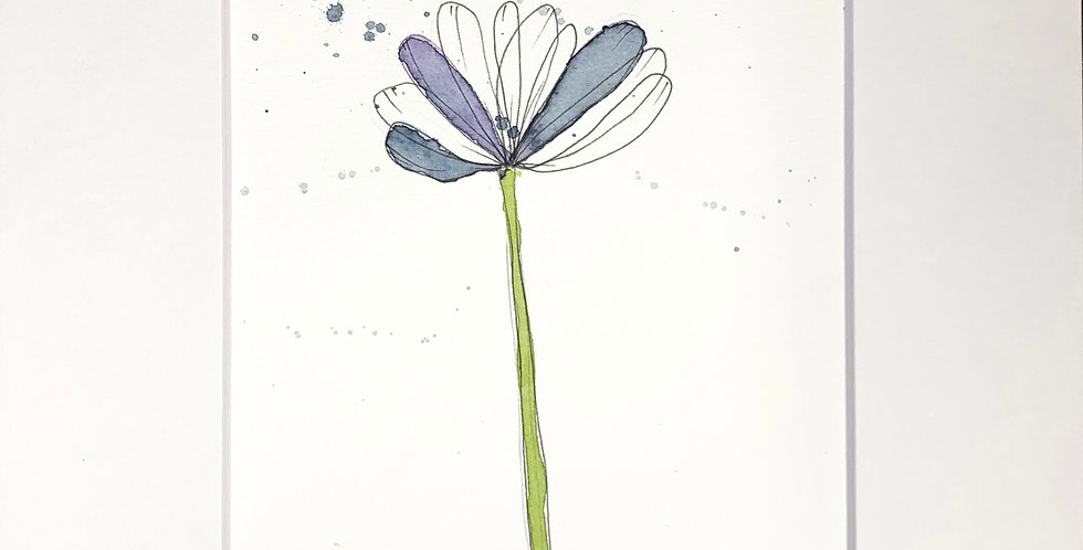 Paynes  Floral