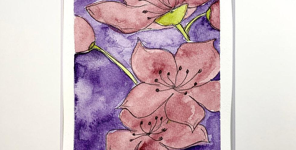 Hibiscus Flora