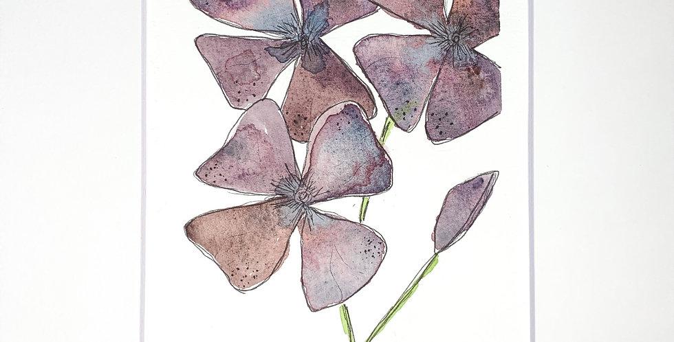 Moonstone Flora