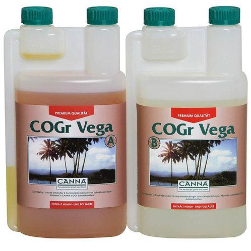 CANNA COGr Vega
