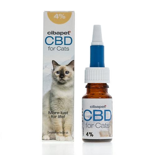 CBD Öl für Katzen 4%
