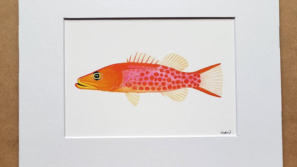 Dr Seuse Fish print