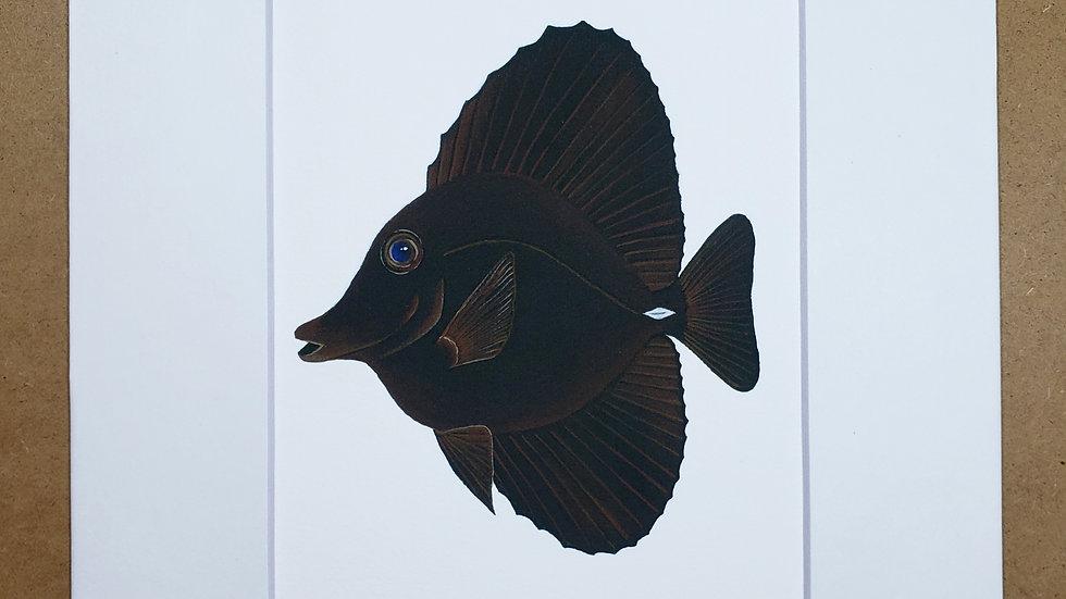 Black Tang print
