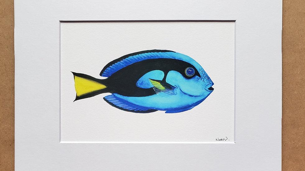 Blue tang print