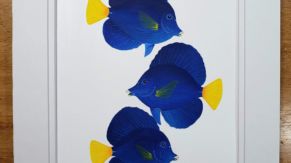 Purple tang trio