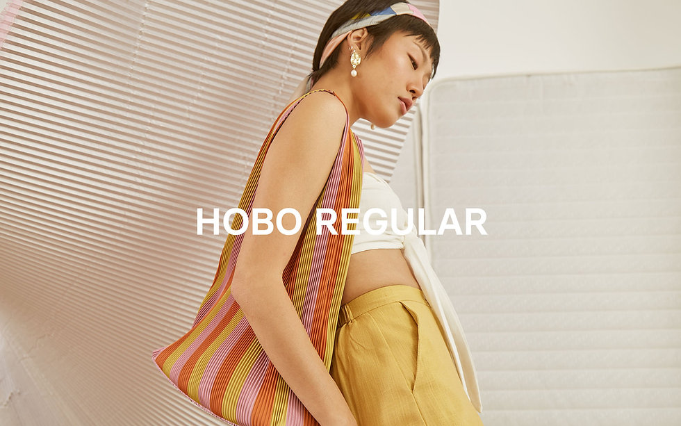 Hobo regular page.jpg