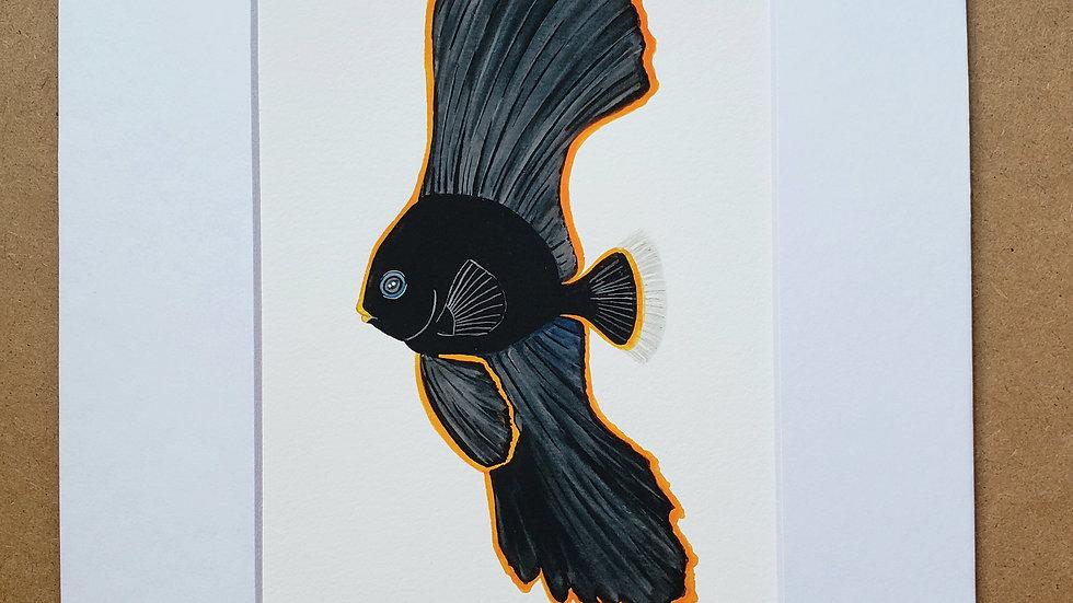 Batfish print