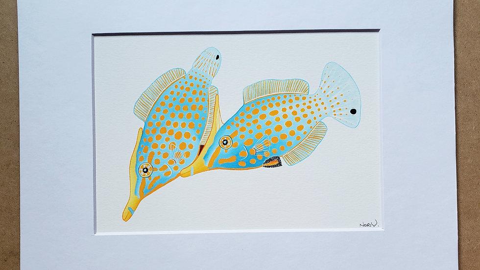 Orange Spot Filefish print