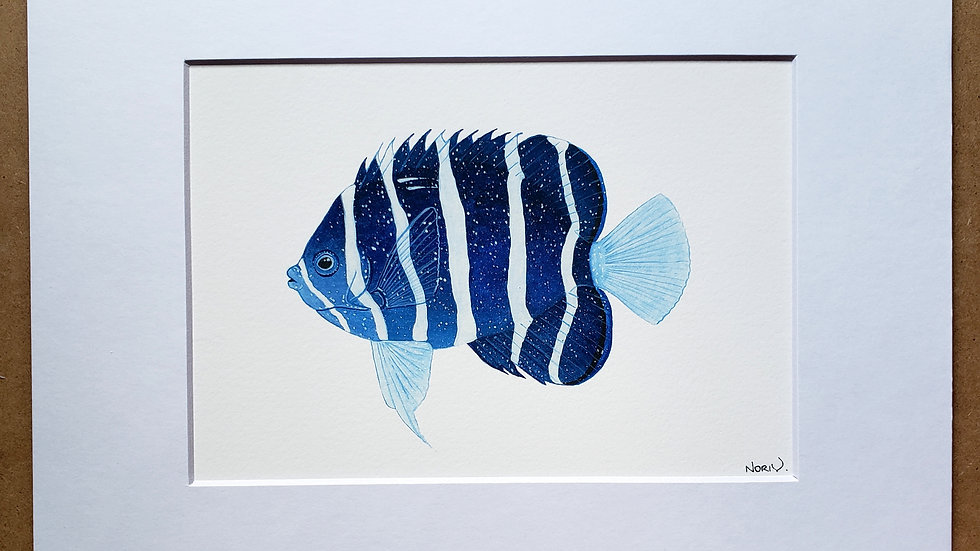 Galaxy style Peppermint angelfish print