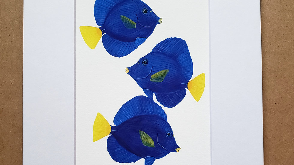 Purple tang trio print