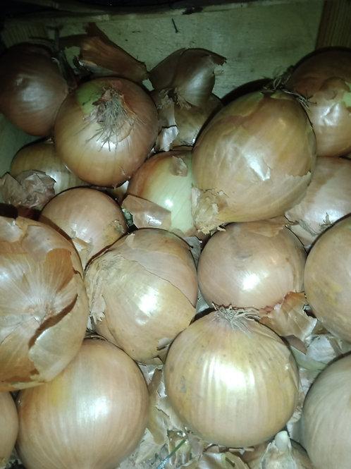 Oignons cuisine fort 300g le  kg 1,20€
