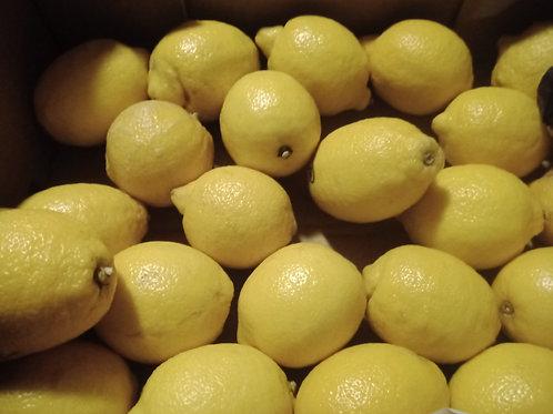 Citron lulu