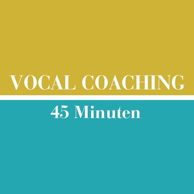 Vocal Coaching // 45 Minuten